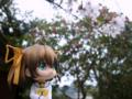 [フィギュア][*Season01:春][GoodSmileCompany][ねんどろいど][D.C. ~ダ・カーポ~]ねんどろいど 朝倉音夢 カットNo.010