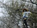 [フィギュア][*Season01:春][GoodSmileCompany][D.C. ~ダ・カーポ~]朝倉音夢 カットNo.001