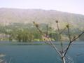[風景・景観][湖]北竜湖(長野県飯山市)