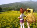 [フィギュア][コトブキヤ][リリカルなのは][*Season01:春]高町なのは&フェイト・テスタロッサ カットNo.006