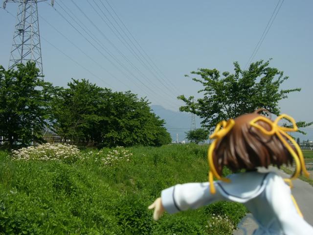 D.C. ~ダ・カーポ~ 朝倉音夢 カットNo.023