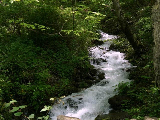 鉢伏山から注ぐ川