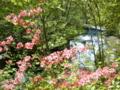 [風景・景観][森林][滝]飛龍の滝(八千穂高原自然園にて)