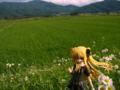 [フィギュア][ALTER][リリカルなのは][*Season02:夏]アルター フェイト・テスタロッサ 私服Ver.(限定版) カットNo.006
