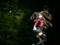 グッドスマイルカンパニー 遠坂凛 -UNLIMITED BLADE WORKS- カットNo.012