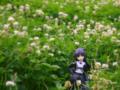 [フィギュア][コトブキヤ][俺妹][*Season02:夏]コトブキヤ 俺の妹がこんなに可愛いわけがない 黒猫 カットNo.004