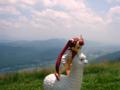 [フィギュア][とらのあな][*Season02:夏]とらのあな COLORS Kitutehu Vignette ガランス カットNo.013