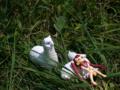 [フィギュア][とらのあな][*Season02:夏]とらのあな COLORS Kitutehu Vignette ガランス カットNo.005