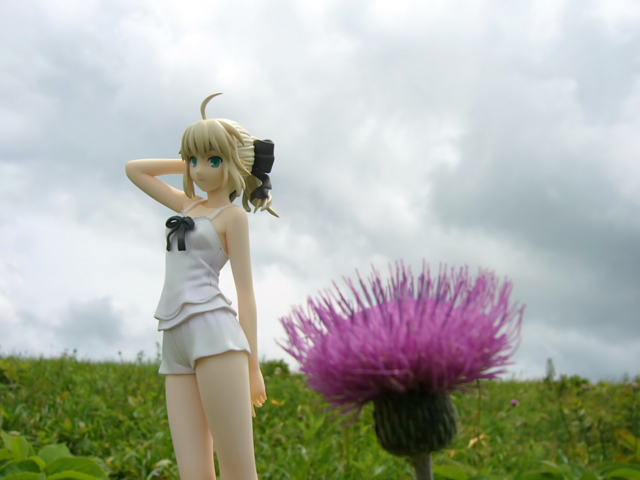 Fate/stay night 魔法使いの夏休み セイバー -Summer Ver.- カットNo.025