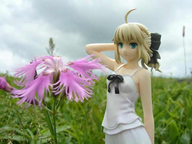 Fate/stay night 魔法使いの夏休み セイバー -Summer Ver.- カットNo.026