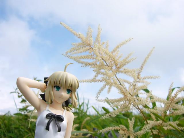 Fate/stay night 魔法使いの夏休み セイバー -Summer Ver.- カットNo.017