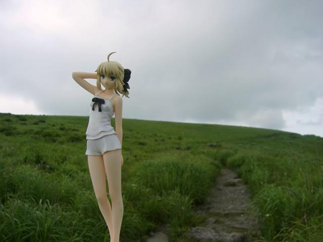 Fate/stay night 魔法使いの夏休み セイバー -Summer Ver.- カットNo.013