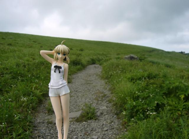 Fate/stay night 魔法使いの夏休み セイバー -Summer Ver.- カットNo.012