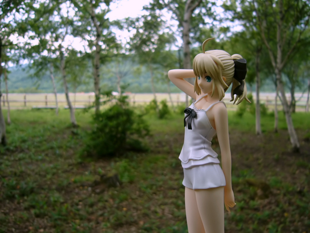 Fate/stay night 魔法使いの夏休み セイバー -Summer Ver.- カットNo.009