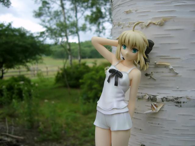 Fate/stay night 魔法使いの夏休み セイバー -Summer Ver.- カットNo.008