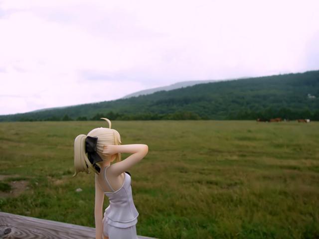 Fate/stay night 魔法使いの夏休み セイバー -Summer Ver.- カットNo.007