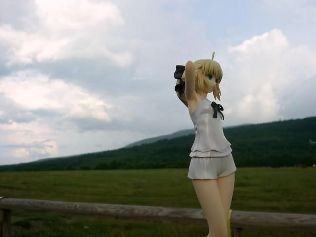 Fate/stay night 魔法使いの夏休み セイバー -Summer Ver.- カットNo.006