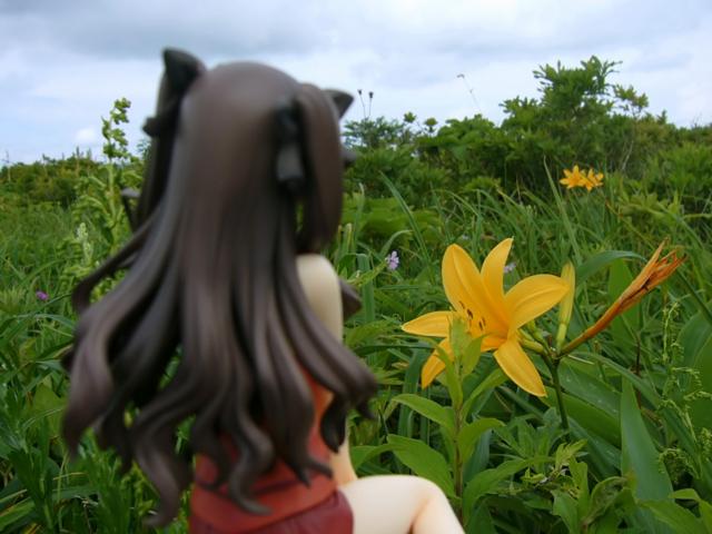 Fate/stay night 魔法使いの夏休み 遠坂凛 -Summer Ver.- カットNo.015
