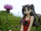Fate/stay night 魔法使いの夏休み 遠坂凛 -Summer Ver.- カットNo.013
