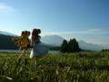 [フィギュア][ALTER][リリカルなのは][*Season03:秋]アルター 高町なのは&フェイト・テスタロッサ カットNo.006