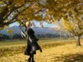 [フィギュア][GoodSmileCompany][GunslingerGirl][*Season03:秋]グッドスマイルカンパニー GunslingerGirl. トリエラ カットNo.015