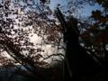 [フィギュア][GoodSmileCompany][GunslingerGirl][*Season03:秋]グッドスマイルカンパニー GunslingerGirl. トリエラ カットNo.001