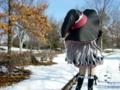 [フィギュア][コトブキヤ][*Season04:冬][シャイニング・ハーツ]コトブキヤ メルティ カットNo.003
