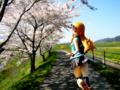 [フィギュア][コトブキヤ][俺妹][*Season01:春]俺の妹がこんなに可愛いわけがない 高坂桐乃 カットNo.006