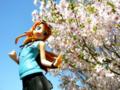 [フィギュア][コトブキヤ][俺妹][*Season01:春]俺の妹がこんなに可愛いわけがない 高坂桐乃 カットNo.003
