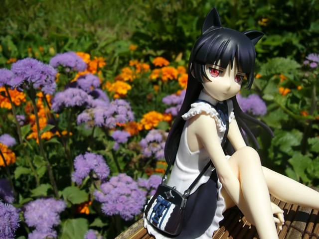 俺の妹がこんなに可愛いわけがない 黒猫 -memories- カットNo.011