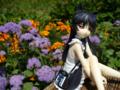 [フィギュア][コトブキヤ][俺妹][*Season02:夏]俺の妹がこんなに可愛いわけがない 黒猫 -memories- カットNo.011