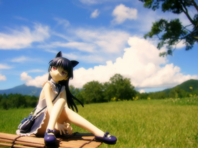 俺の妹がこんなに可愛いわけがない 黒猫 -memories- カットNo.006
