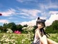[フィギュア][コトブキヤ][俺妹][*Season02:夏]俺の妹がこんなに可愛いわけがない 黒猫 -memories- カットNo.003