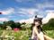 俺の妹がこんなに可愛いわけがない 黒猫 -memories- カットNo.003
