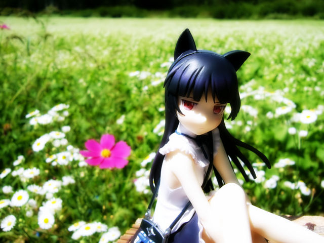 俺の妹がこんなに可愛いわけがない 黒猫 -memories- カットNo.002