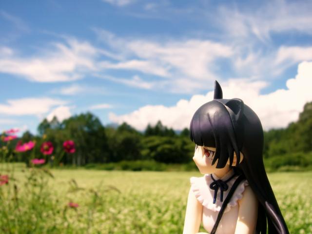 俺の妹がこんなに可愛いわけがない 黒猫 -memories- カットNo.001