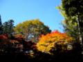 [風景・景観][史跡・名勝][紅葉]霊松寺 (長野県大町市)