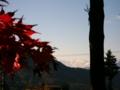 [風景・景観][紅葉][空]清水寺 (長野県長野市)