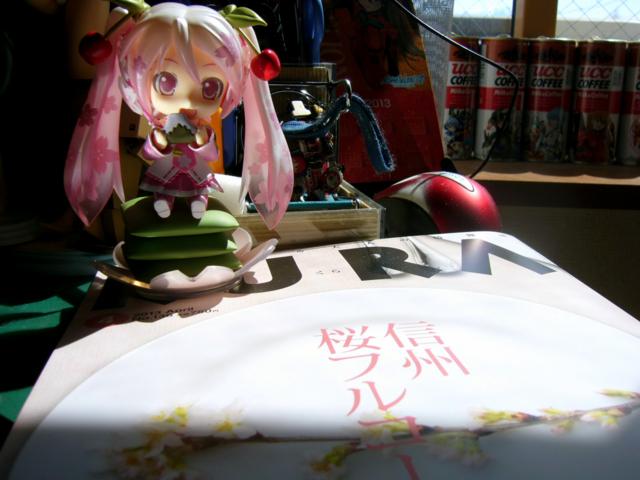 今年も桜特集の季節