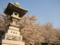 谷厳寺(長野県中野市)