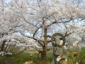 [風景・景観][桜]谷厳寺(長野県中野市)