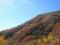 湯の丸高原への登坂途中にて
