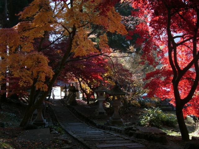 清水寺 (長野県長野市)