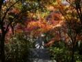 [風景・景観][紅葉]谷厳寺(長野県中野市)