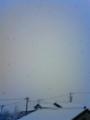 [はてなハイク][雪]雪