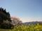 [風景・景観][桜][空]