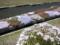 農具川河川公園の芝桜
