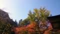 [風景・景観][紅葉]霊松寺(長野県大町市)