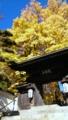 [風景・景観][紅葉]仏法紹隆寺(長野県諏訪市)