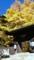 仏法紹隆寺(長野県諏訪市)